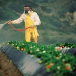 pesticide-1024x1024